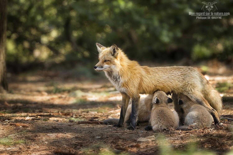 La famille !!
