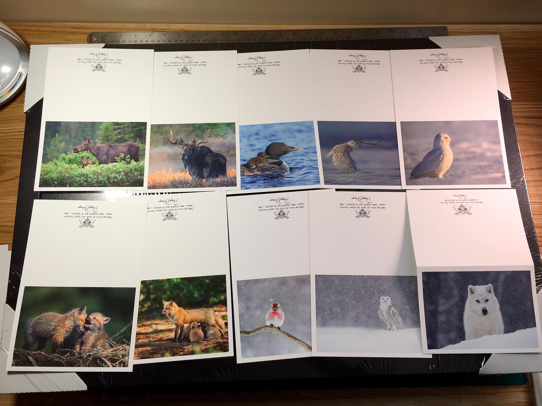 C'est aussi une collection de carte haut gamme sur papier d'art. Seulement en boutique pour l'instant Arrive prochainement sur le site