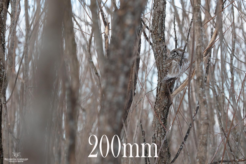 200mm-5D4_2366-copie