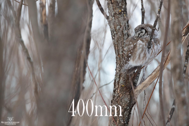 400mm-5D4_2372-copie